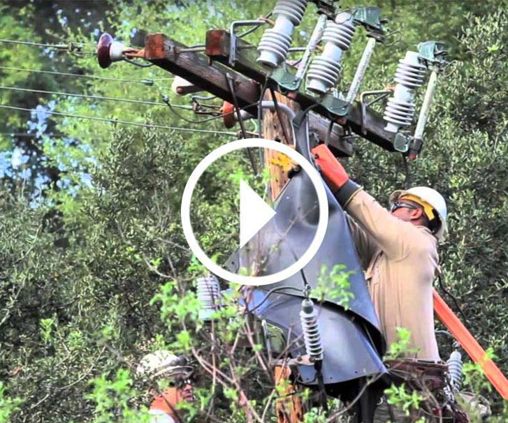 Video thumbnail image of linemen working on transmission line